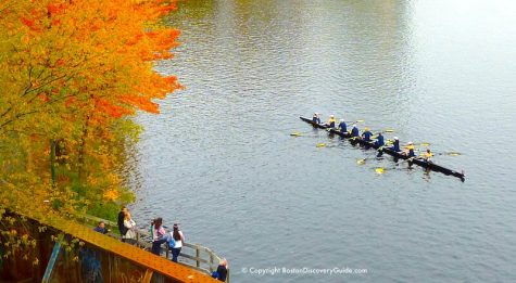 A crew team rows along the Charles River in Boston, MA.